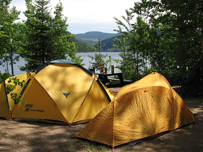 Terrain camping camp accueil